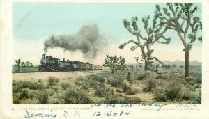 Railroad, California Limited, On the Desert, Detroit Photographic No. 5512