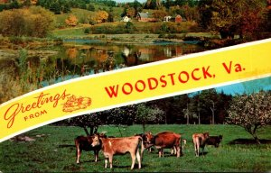 Virginia Woodstock Greetings Showing Farm Scene and Cows Grazing