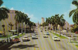 Florida Miami Biscayne Boulevard