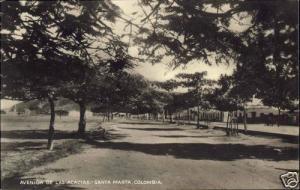 colombia, SANTA MARTA, Avenida de las Acacias (1930s) RPPC