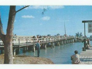 Pre-1980 FISHING SCENE St. Petersburg Florida FL AF5621