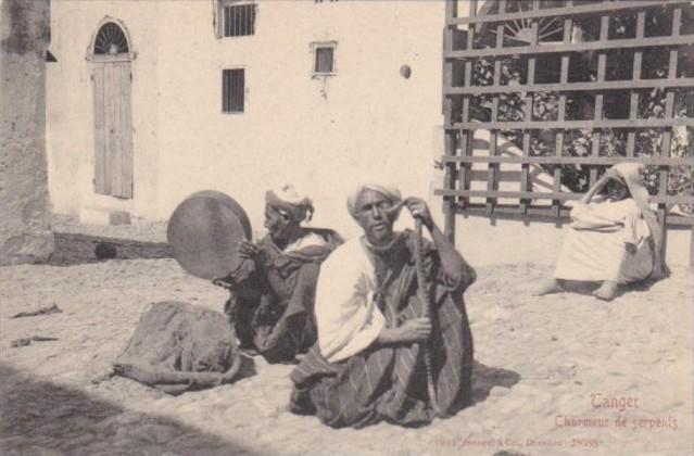 Morocco Tanger Charmeur de Serpents Snake Charmers