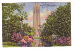 The Singing Tower, Flamingos, Mountain Lake Sanctuary, Lake Wales, Florida,