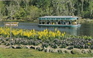 SILVER SPRINGS, Florida, 1940-1960's; Wonderland Through The Glass Bottom Boats