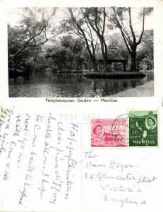 mauritius maurice, PAMPLEMOUSSES, Garden Scene (1950s) RPPC Stamps