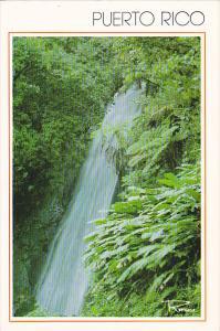 Puerto Rico Cascade de La Coca El Yunque Rain Forest