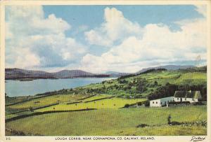 Ireland Galway Lough Corrib Near Cornamona