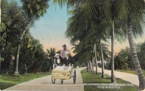 Automobile Road And Bicycle Trail, PALM BEACH, Florida, 1900-1910s
