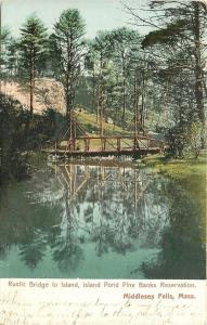 Middlesex Fells MA~Island Pond Pine Banks Reservation~Rustic Bridge~1906