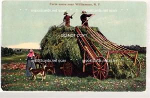 Farm scene near Williamson NY