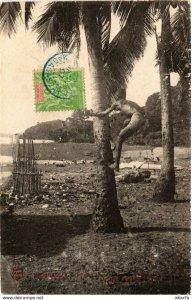 CPA AK Indigene allant cueillir noix de coco MADAGASCAR (819139)