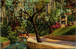 St. Petersburg, FL, In Beautiful Roser Park, Linen Vintage POSTMARKED POSTCARD