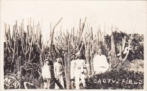 Cuba Sailors Standing In Cactus Field Real Photo