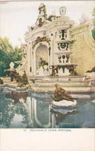 Portugal Fountain At Leiria