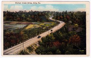 Erie PA 1915-30 Walnut Creek Drive Road Scene Early Automobiles RARE WB Postcard