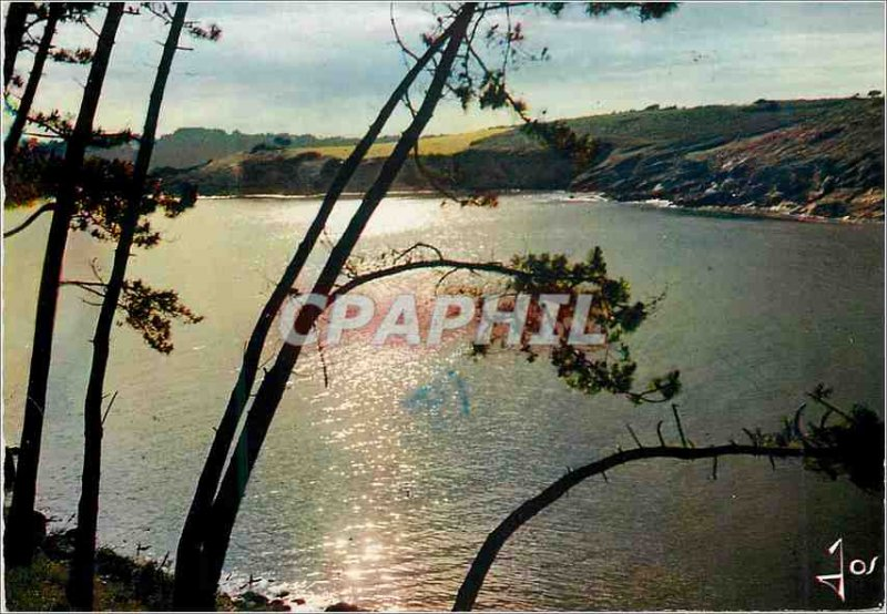 Postcard Modern Brittany Colored summer of Evening on a Breton river between ...