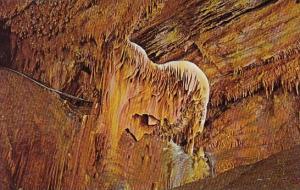 Jackson's Horse Shield Formation Grand Caverns Grottoes Virginia