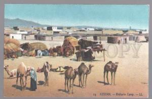098889 EGYPT Assuan Bisharin Camp CAMELS Vintage colorful PC