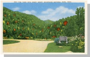Smoky Mountains,Tennessee/TN Postcard,Nat'l Park,Near Mint!