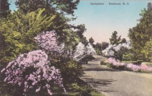 Blooming Azaleas In Springtime Pinehurst North Carolina Handcolored Albertype