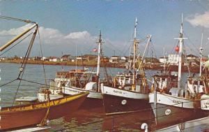 Fishing Fleet At The Old Sept-Iles Pier, Sept-Iles, Quebec, Canada, PU-1986