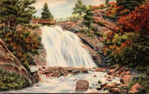 Colorado Colorado Springs Helen Hunt Falls North Cheyenne Canon Curteich