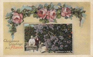 FLORIDA, PU-1923; Christmas Greetings From Florida, Flowers