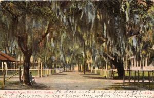 DE LAND FLORIDA A FLORIDA VIEW POSTCARD c1907