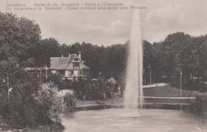Strassburg Partie In Der Orangerie Antique French Postcard