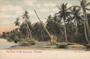 Trinidad Home Of The Cocoa-Nut