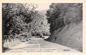 Mt Jewett-Kane (Hazel Hurst) Pennsylvania~McKean Forest Along US Route 6 1940s