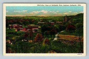 Gallipolis OH, Birds-Eye View Gallipolis State Institute, Ohio, Chrome Postcard