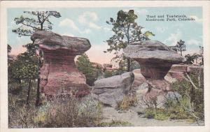 Toad and Toadstools, Mushroom Park, Colorado, 10-20s