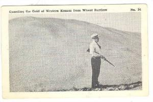 Guarding the Gold of Western Kansas from Wheat Rustlers, Kansas,  40-60s