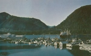 Petersburg , Alaska , 1950-60s ; Harbour