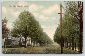 Bangor Michigan~Leaves From One Tree Cover Cass Street~Nice Big Homes~c1910 PC