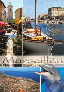 France Au Bord de la Mdeiterranee Marseillan Fishing Boats Dolphin Postcard