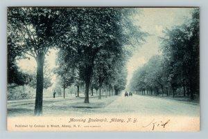 Albany NY-New York Manning Boulevard Vintage c1907 Postcard