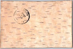 Wisconsin Postcard Real Tree Bark (Probably Birch) w/ 1908 BLUE RIVER Cancel