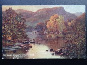 BETTWS Y COED Salmon Fishing on River Conway c1911 Postcard by Raphael Tuck 9328