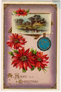 Merry Christmas, Poinsettias, Dec 25