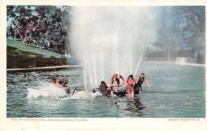 Glenwood Springs Colorado~Bathing Beauties & Beach Bums in Pool~1905 Detroit Pub
