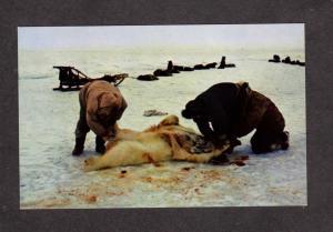 AK Eskimos Taxidermy Polar Bear Arctic Alaska Postcard Jonas Bros Anchorage