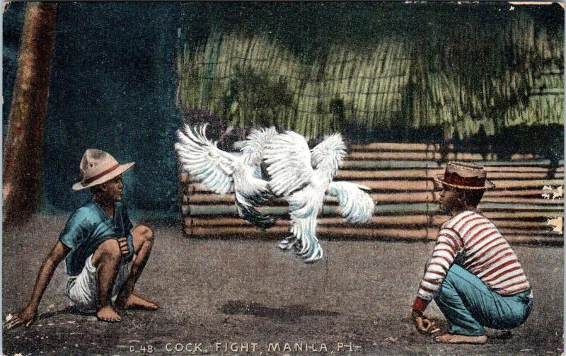 MANILA, Philippines    COCK FIGHT    c1910s    Postcard