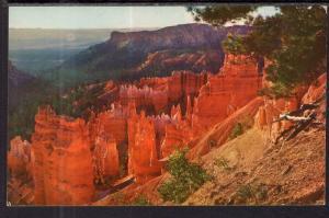 Bryce Canyon National Park,UT BIN
