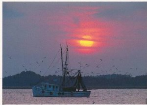 Shrimp Boat On Skull Creek At Sunset Hilton Head Island South Carolina