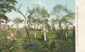 French Cemetery , Monkey Hill , Panama Canal , 1901-07