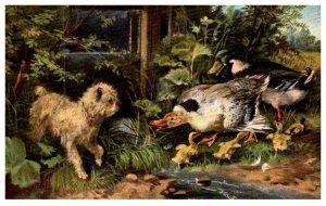 Dog , Dog and Ducks