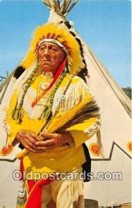 Dignity & Poise of a Chief  Postcard Post Cards  Dignity & Poise of a Chief