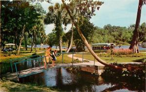 SILVER SPRINGS PARK SCENE WOMEN'S FASHION 1960'S FLORIDA FL POSTCARD